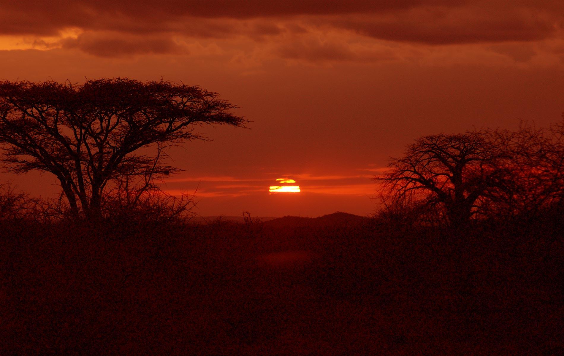 KENYA - TSAVO EAST NAT. PARK - © Graziano Villa