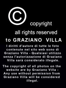 G.VILLA_copyright_2_1