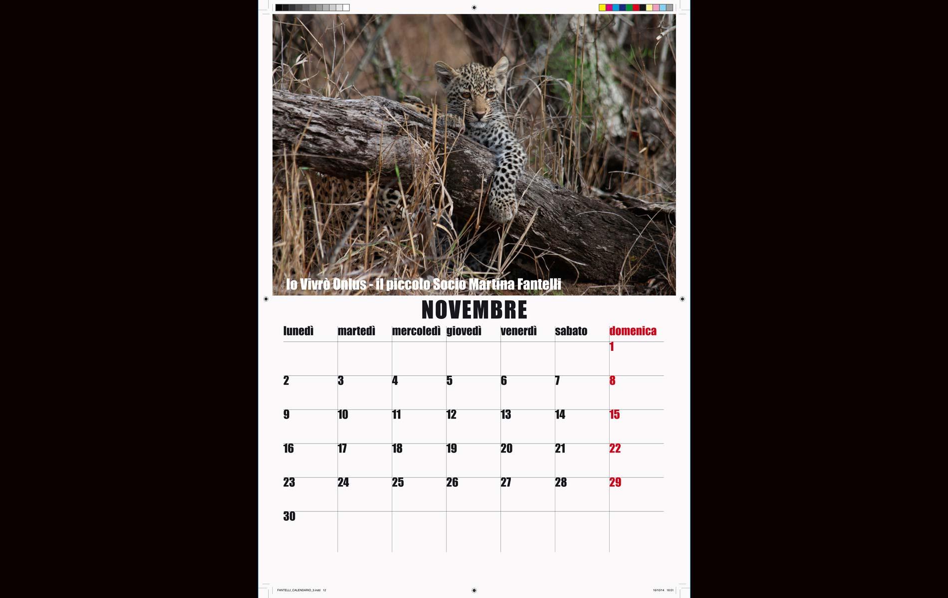 """""""IO VIVRO' """" - onlus - 2015 Calendar November - © Graziano Villa"""