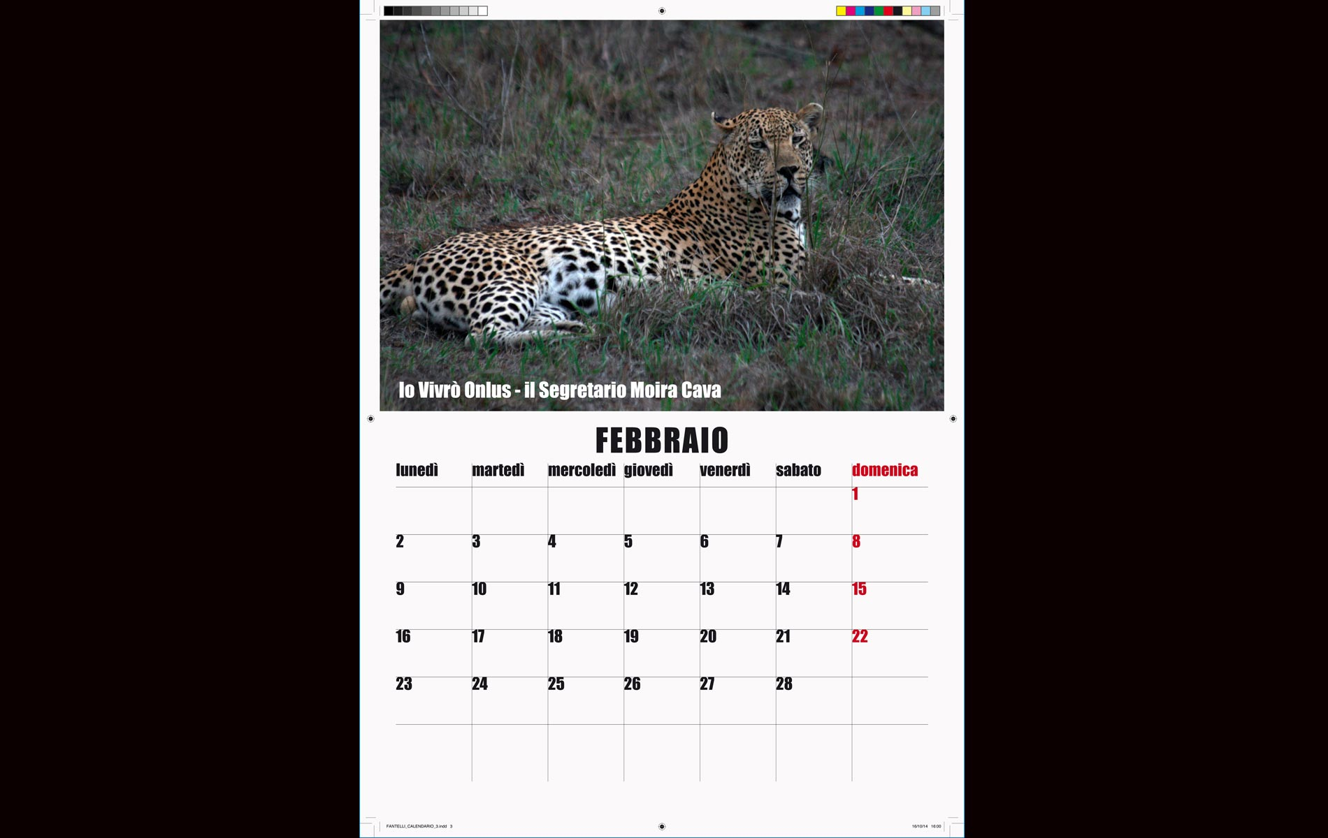 """""""IO VIVRO' """" - onlus - 2015 Calendar February  - © Graziano Villa"""