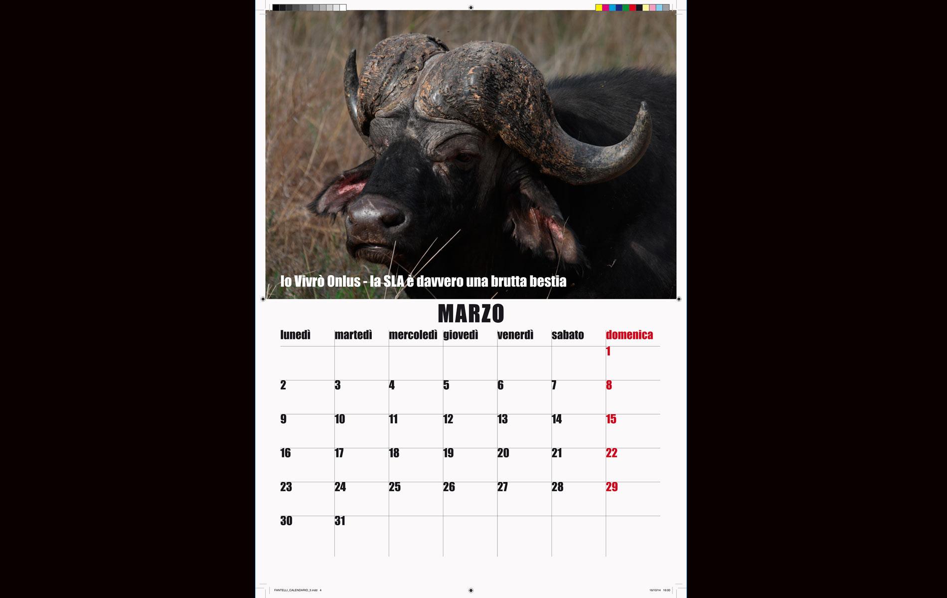 """IO VIVRO' "" - onlus - 2015 Calendar March - © Graziano Villa"