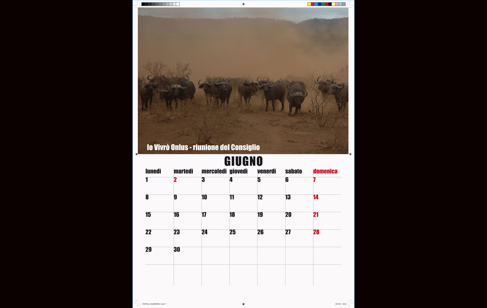 """IO VIVRO' "" - onlus - 2015 Calendar June - © Graziano Villa"