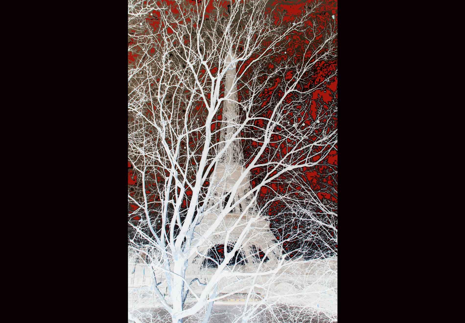 18. Arbre Magique  n. 1 –  Magic Tree  n. 1 - © Graziano Villa